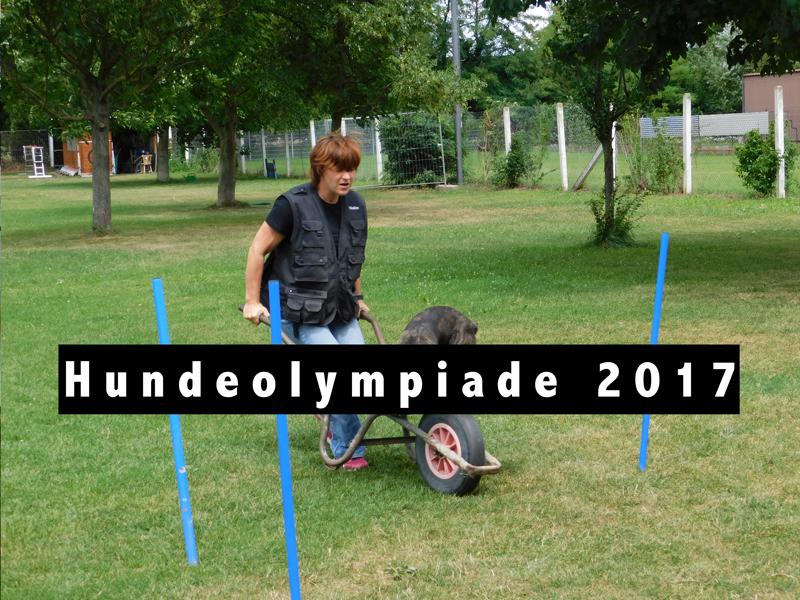 Hundeolympiade 2017