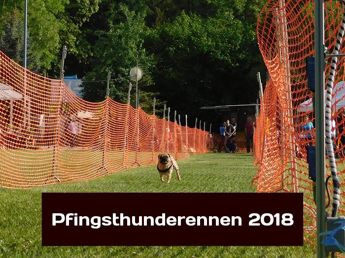 Pfingsthunderennen 2018