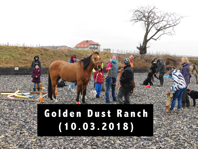 Golden Dust Ranch